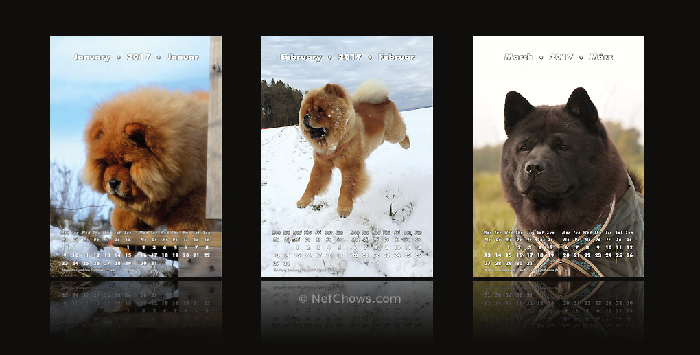 The Chow-Chow Calendar 2017 / January to March