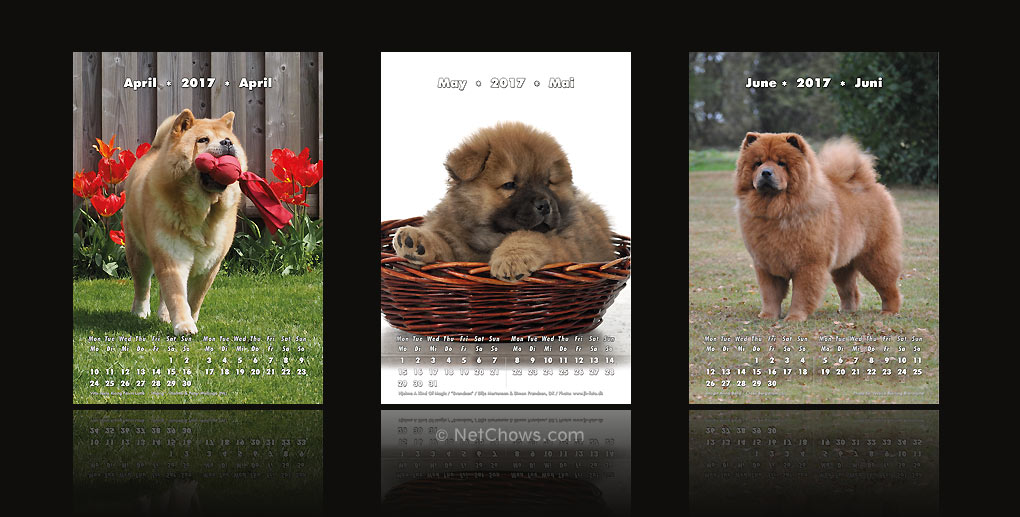 The Chow-Chow Calendar 2017 / April to June