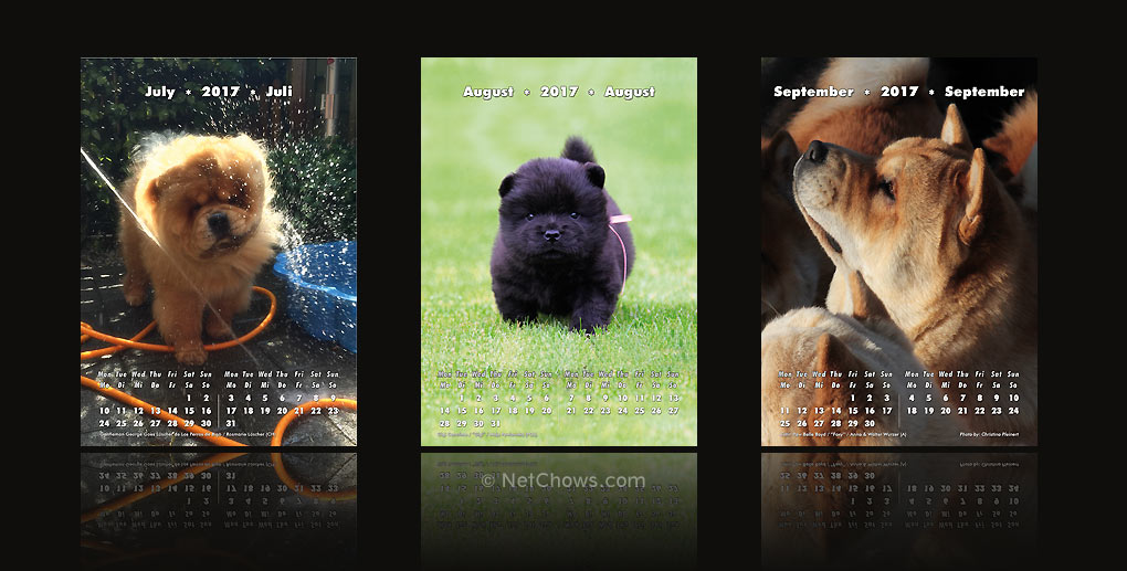 The Chow-Chow Calendar 2017 / July to September