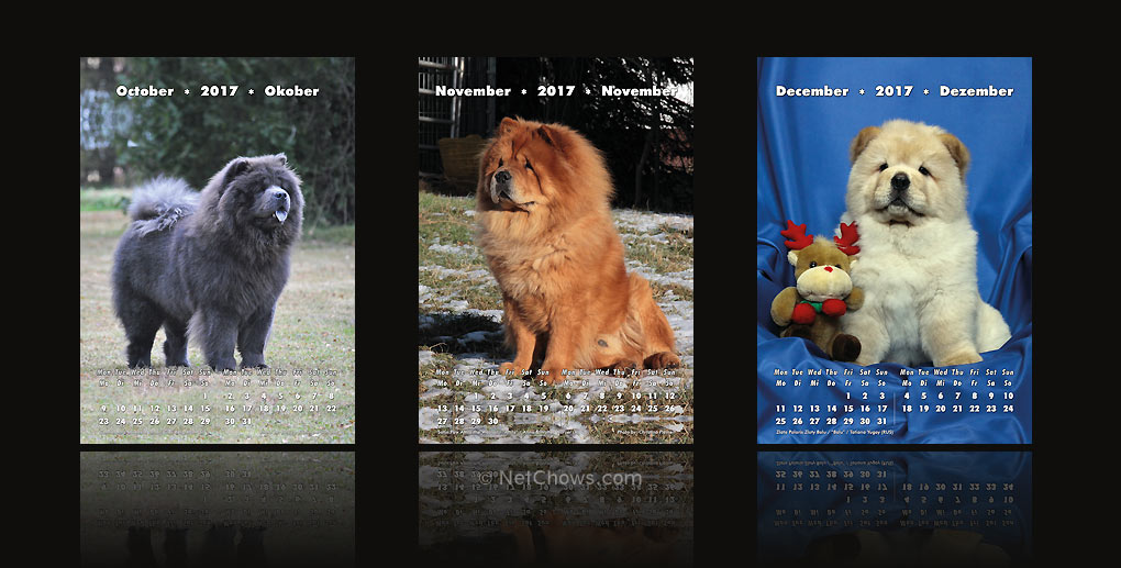 The Chow-Chow Calendar 2017 / October to December