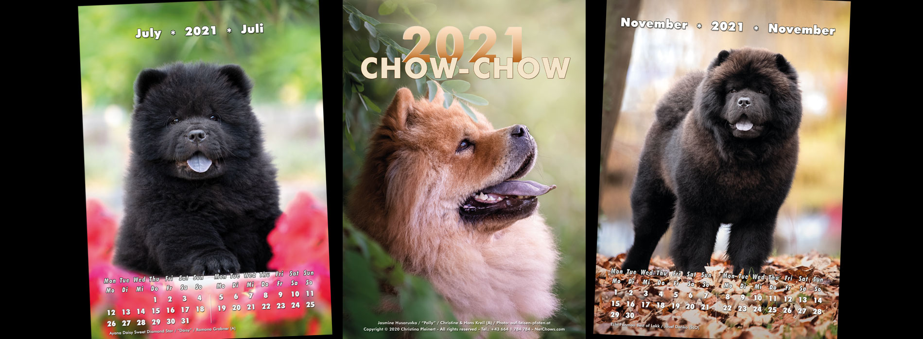 NetChows is proud to present the Chow-Chow Calendar 2020